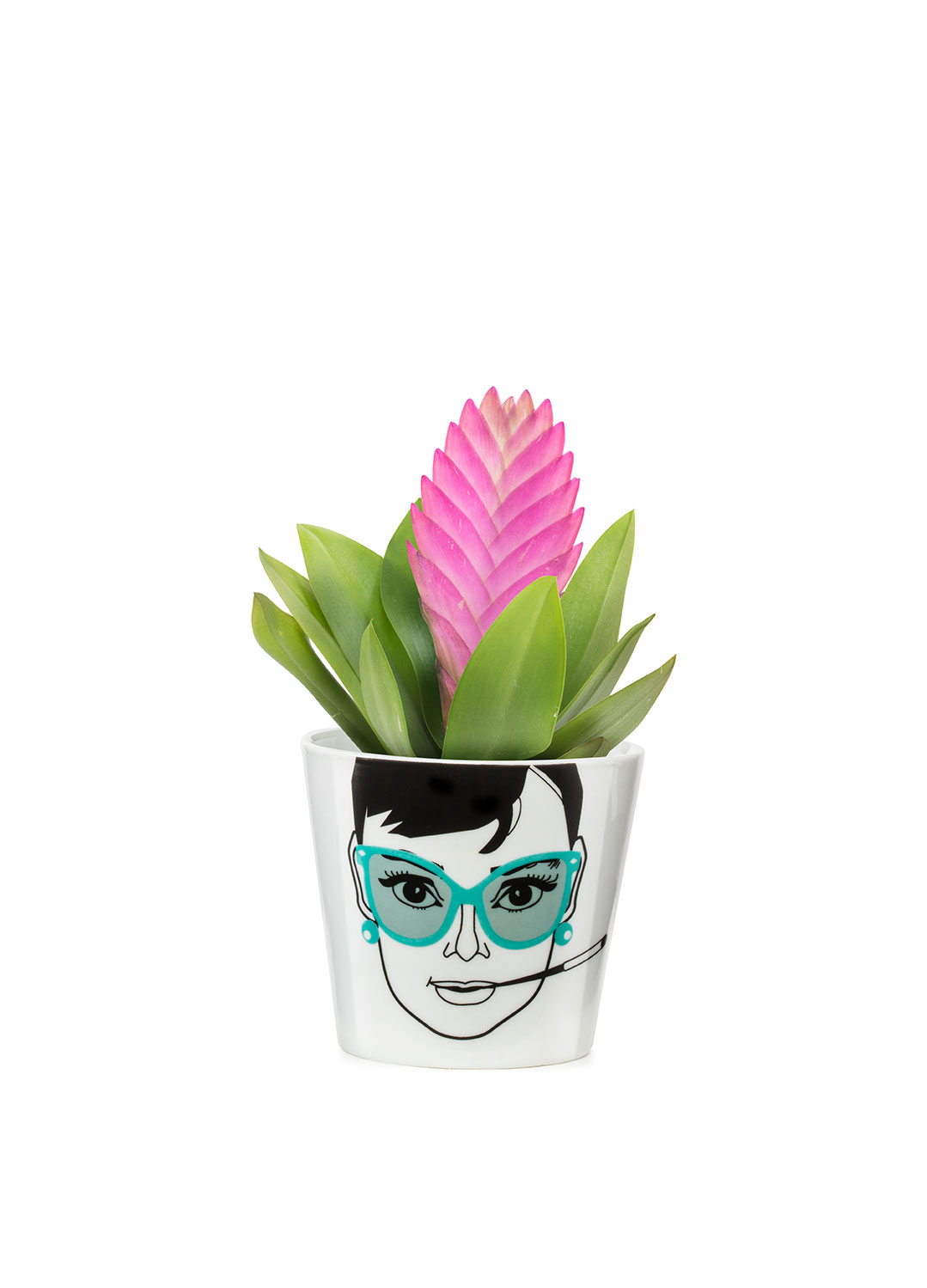 [10%할인+10%추가/DONKEY PRODUCTS] Flower Pot Small - Elegant Audrey