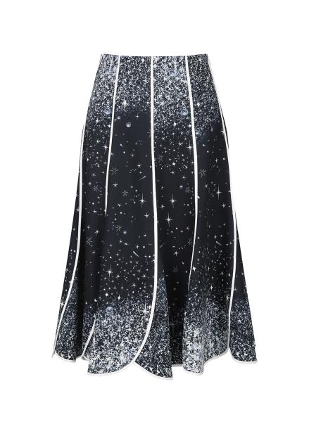 Shining Print Flare Skirt