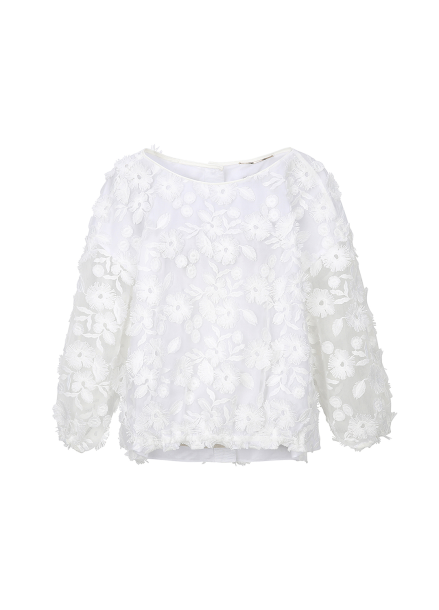 Flower Point See-through Blouse
