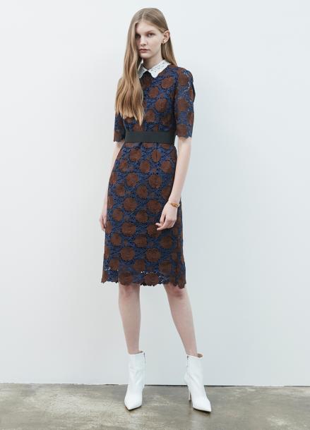 Collar Lace Midi Dress