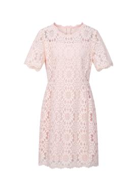 Lace Half Sleeve Dress