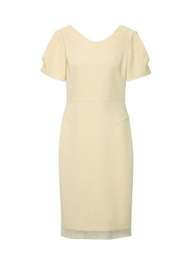 Raglan V Neck H Line Dress